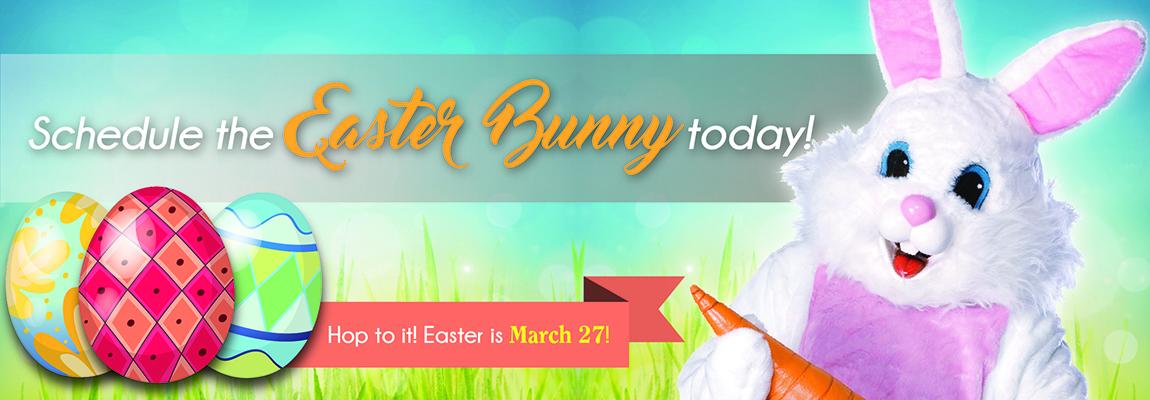 Easter Bunny Slider